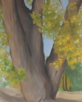 Okeeffe Painting of a cottonwood tree